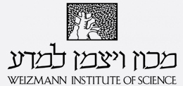 logo_vaytzman